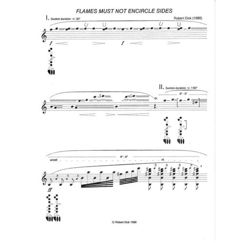 Flames Must Not Encircle Sides (Softcover Book)