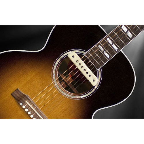 LR Baggs M1A Active Soundhole Body-Sensitive Magnetic Pickup