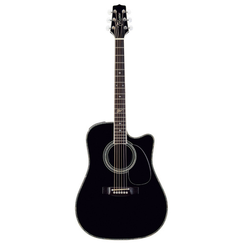 "Takamine ""Steve Wariner"" Artist Series Dreadnought AC/EL Guitar with Cutaway"